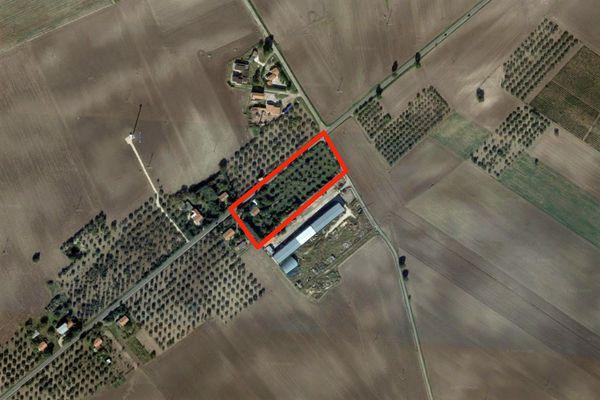 Immagine n0 - Planimetria - Vista aerea - Asta 7015