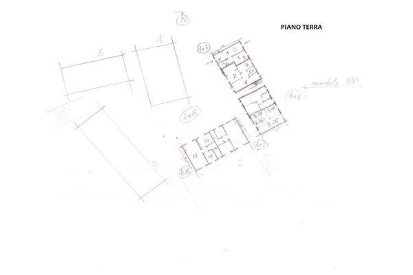 Immagine n0 - Planimetria - Piano terra - Asta 7037