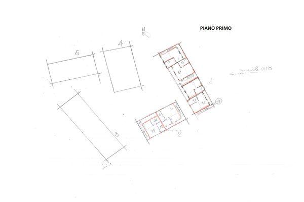 Immagine n0 - Planimetria - Piano primo - Asta 7037