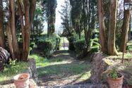 Immagine n4 - Porzione di villa con autorimessa - Asta 7137
