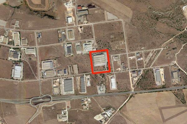 Immagine n0 - Planimetria - Vista aerea - Asta 7267