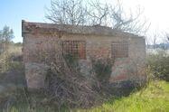 Immagine n7 - Fabbricati rurali per 2.140 mq - Asta 7278