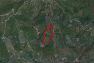 Immagine n0 - Agricultural land of 49,700 square meters - Asta 7283