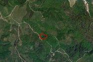 Immagine n4 - Terreno agrícola de 37.030 m2. - Asta 7285