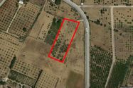 Immagine n0 - Agricultural land of 4870 sqm - Asta 7368