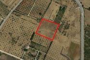 Immagine n0 - Terreno agricolo di 5270 mq - Asta 7369