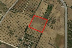 Agricultural land of      square meters - Lot 7369 (Auction 7369)
