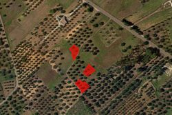 Agricultural land of      sqm - Lot 7402 (Auction 7402)