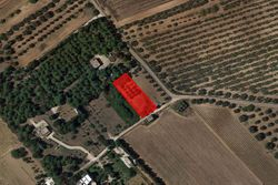 Agricultural land of      square meters - Lot 7403 (Auction 7403)