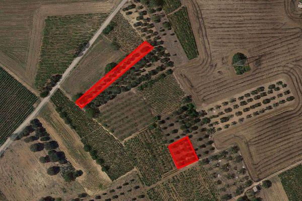 Immagine n0 - Planimetria - Vista aerea - Asta 7406