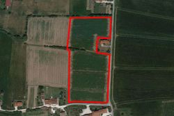 Agricultural land of   ,    square meters - Lot 7412 (Auction 7412)