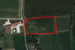 Agricultural land of   .    sqm - Lote 7413 (Subasta 7413)