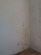 Immagine n4 - Appartamento in complesso residenziale (Sub 32) - Asta 7440
