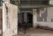 Immagine n3 - Capannone commerciale con laboratorio, mostra e vendita - Asta 7445