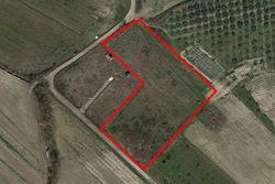 Agricultural land of  ,    square meters - Lote 7449 (Subasta 7449)