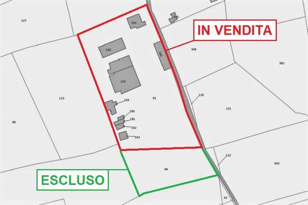 Immagine n1 - Planimetria - Estratto di mappa - Asta 7450
