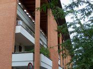 Immagine n0 - Appartamento con cantina e garage. Piano secondo (int. 7/C) - Asta 746