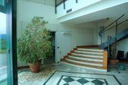 Immagine n2 - Capannone con uffici e terreno con potenzialità edificatoria - Asta 7517