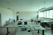 Immagine n3 - Capannone con uffici e terreno con potenzialità edificatoria - Asta 7517