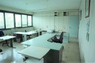 Immagine n6 - Capannone con uffici e terreno con potenzialità edificatoria - Asta 7517