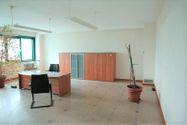Immagine n7 - Capannone con uffici e terreno con potenzialità edificatoria - Asta 7517