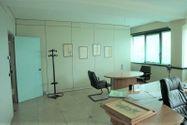 Immagine n8 - Capannone con uffici e terreno con potenzialità edificatoria - Asta 7517