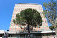 Immagine n7 - Appartamento con box auto in zona centrale - Asta 7520