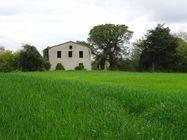 Immagine n0 - Casa colonica con terreni agricoli - Asta 7577