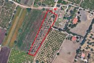 Immagine n0 - Portion of ruins with 5,400 sqm of agricultural land - Asta 7601