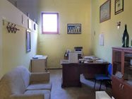 Immagine n3 - Warehouse with building area - Asta 7619