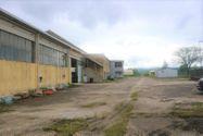 Immagine n6 - Opificio industriale con annesso appartamento - Asta 7688