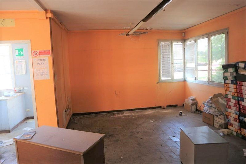 Immagine n. 10 - #7775 Capannone con palazzina uffici e piazzale