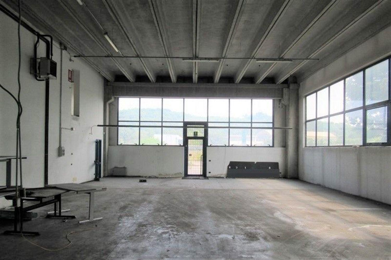 Immagine n. 4 - #7803 Capannone con laboratori, magazzini e uffici
