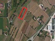 Immagine n0 - Terreno agricolo - Asta 783