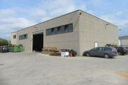 Immagine n11 - Capannone con uffici e alloggio al grezzo - Asta 7849