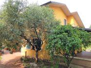 Immagine n1 - Villa indipendente con giardino esclusivo - Asta 7878