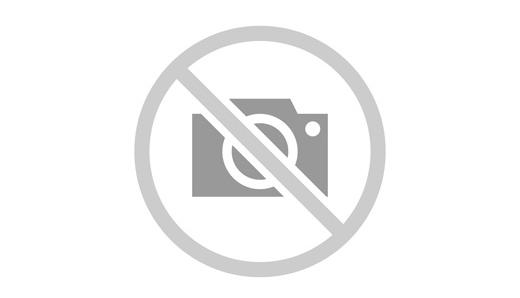 Immagine n2 - Villetta a schiera allo stato grezzo (mapp. 786) - Asta 7879