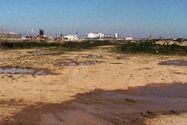 Immagine n14 - Cantiere nautico - Asta 798