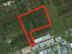 Wooded farmland - Lot 808 (Auction 808)