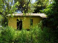 Immagine n2 - Ex edificio colonico con piscina - Asta 810