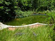 Immagine n4 - Antiguo edificio colonial con piscina - Asta 810