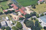 Immagine n7 - Antico casale con abitazioni e pertinenze - Asta 8206