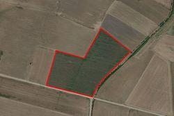 Terreno agricolo (41810 mq)