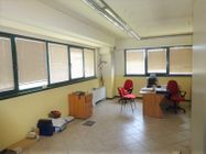 Immagine n5 - Industrial shed with offices and private courtyard - Asta 8663
