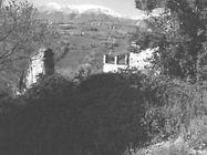 Immagine n5 - Fabbricati collabenti e terreni - Asta 877