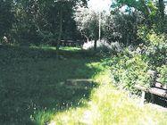 Immagine n0 - Quota 1/2 di giardino piantumato - Asta 879