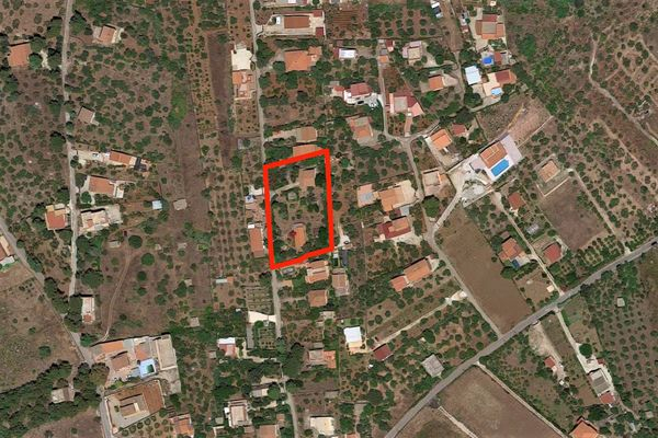 Immagine n0 - Planimetry - Aerial view - Asta 8883