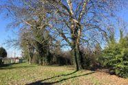 Immagine n4 - Abitazione indipendente con parco - Asta 8917
