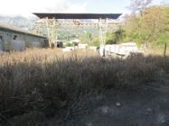 Immagine n2 - Capannone con terreno circostante - Asta 8925