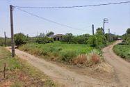 Immagine n1 - Due abitazioni rurali con cortile e terreno - Asta 8957